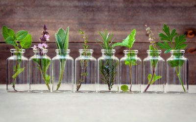 Why Cannabis & Aromatherapy are the Perfect Match
