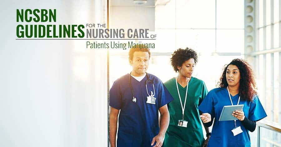 PRESS RELEASE: NCSBN Publishes National Nursing Guidelines for Cannabis Patient Care