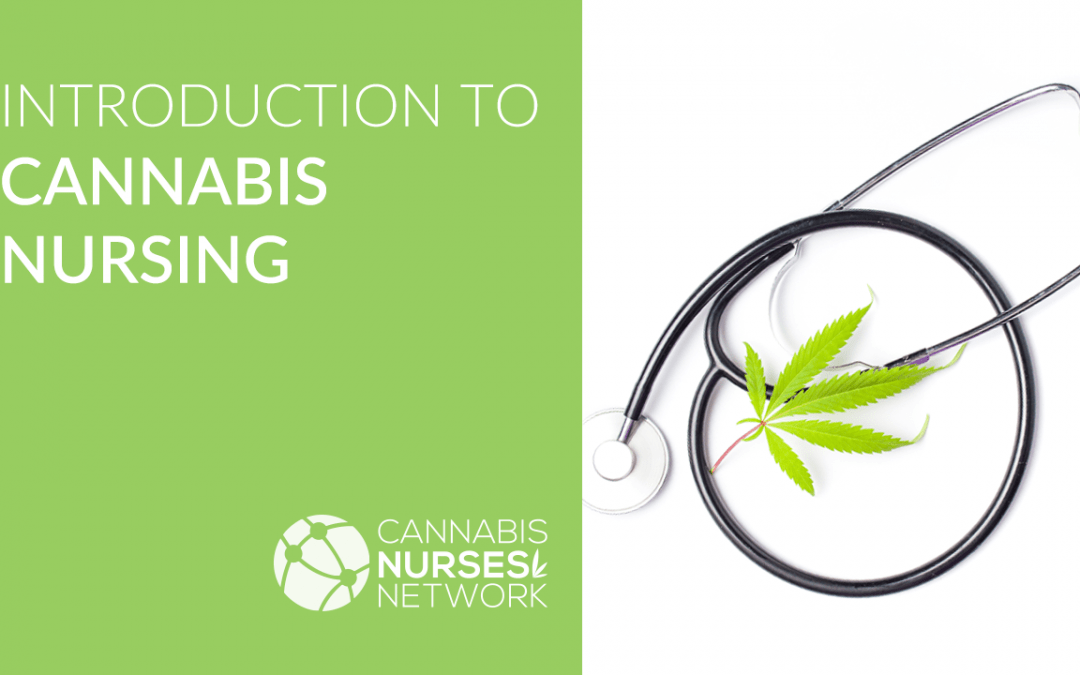 Introduction to Cannabis Nursing Program + CEUs