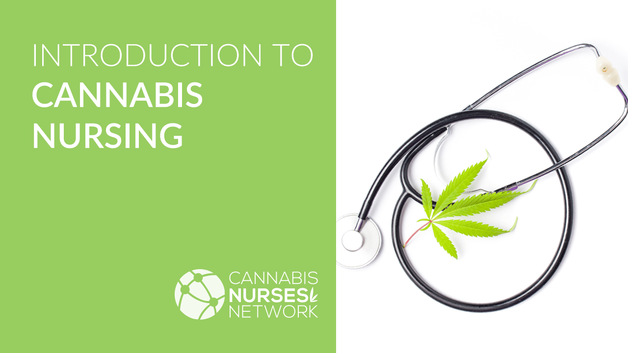 introduction to cannabis nursing video course