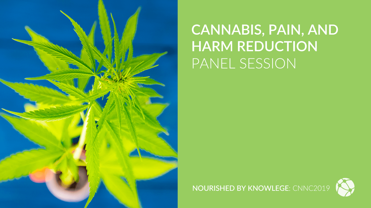Cannabis, Pain, and Harm Reduction