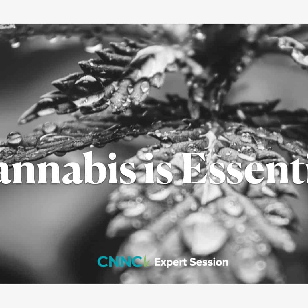 Cannabis is Essential