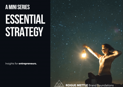 Essential Strategy for Nurse Entrepreneurs: Mini Series