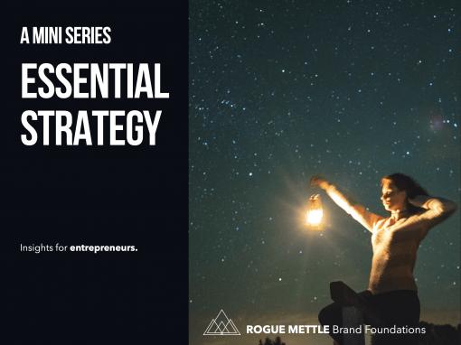 Essential Strategy for Nurse Entrepreneurs: Mini Series